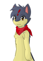 Sky The Quilava by Zander-The-Artist