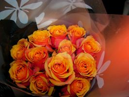peach roses 2061 by Maxine190889