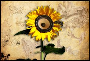Sunflower Sound by insid3out