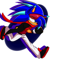 Speed the Hedgehog by rouge2t7