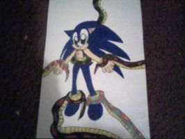 Snakes Want Sonic by PrincessShannon07