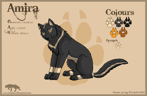 Amira_Reference by KendaWolf