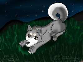 Silver, night and grass by Fangy-From-Shadow