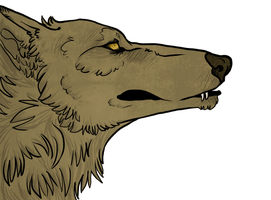 Free-use textured wolf. by Vosska