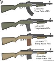 L.E.C. Pump-Action Line of Rifles by tylero79