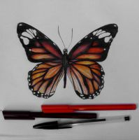 Monarch Butterfly ballpoint pen drawing by haloanime97