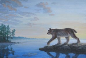 Lynx by the lake by Kivuli