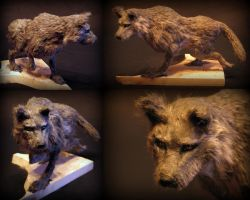 Wolf (detail doll) by marew