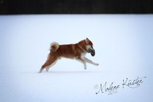 Keiko's first snow by Densetsubolt