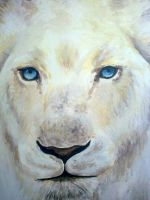 White Lioness by Catherine1992