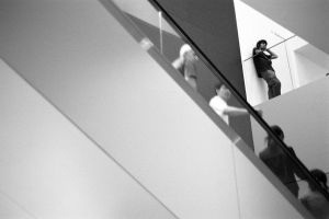 MOMA by jeannewilson