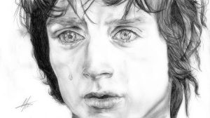 Frodo, Son of Drogo by Abitha-x