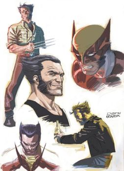 Wolverine concept 2 by DustinWeaver