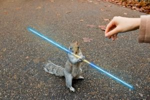 PhotoEdit | Squirrel With PockySaber Weapon by loncing