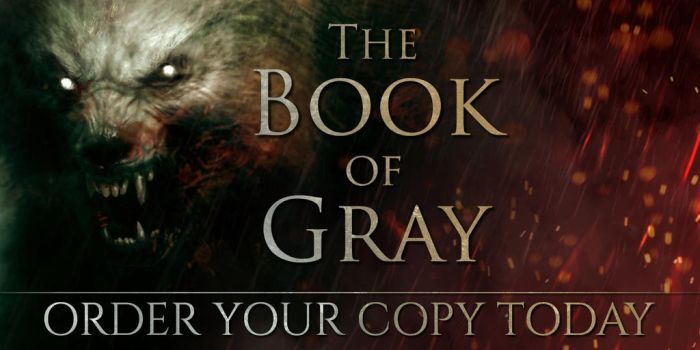 The Book of Gray Novel has been released! by BradyGoldsmith