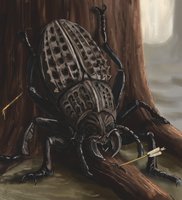 Tracery Beetle by Crowsrock