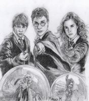 Harry Potter by milosmorar