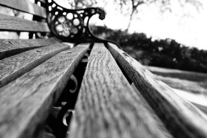 Lonely Park Bench by xXhell0cupcak3Xx