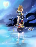 Sora by Cindiq