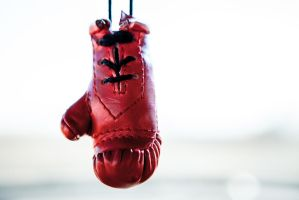 Boxing Glove by dmitrikalinin