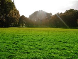 Green Park, London by walktothewater