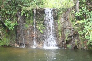 brazil Waterfall stock by Evil-Mysteries
