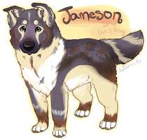 Jameson by TheyCallDaWindMariah