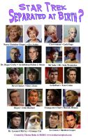 Star Trek Separated At Birth by Therese-B