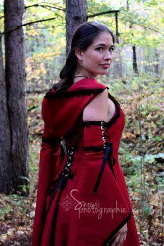 Little red riding hood by Feral-Workshop