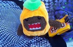 Pumpkin Domo Protects Duds by digipatd