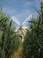 to the windmill by Nancynoo