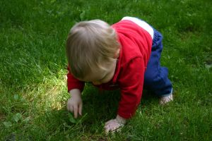 Baby in the Grass 3 by ArtistStock