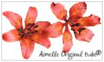 tub_Flowers orange 01_psd file by Aimelle-Stock