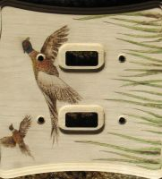 Pheasant Switch Plate by SpikedPyro