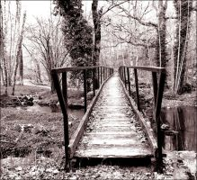 The fear bridge by Minam