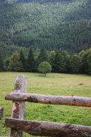Autumn in the Carpathians by MartinaMatiss