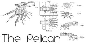 EVE Online Ship Pelican by nomadrocker