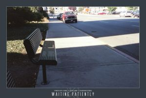 008- waiting patiently by xerro