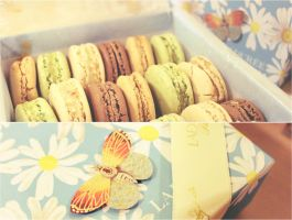 Laduree Summer Macarons by ai-chyan
