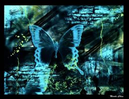 Conceptual Butterfly by chicz