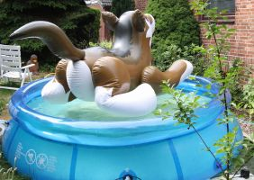 inflatable wolf in the pool 2 by schorse1000