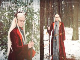 The Hobbit: Winter in Mirkwood by Revelio
