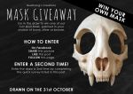 Mask Giveaway by Bueshang