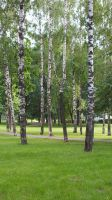 Moscow park by MytaBes