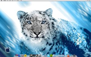 Another Pic Of My Desktop by MaxLaHax
