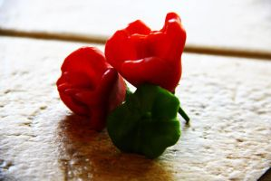 Bell-like Peppers. by abbychunga