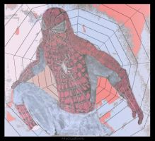 spiderman by HirOinEvOl