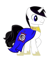Vector Barrfind in his cape by Barrfind