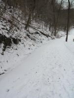 Snow Path-1 by Rubyfire14-Stock