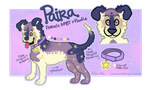 Paira by steelx10deal